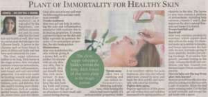 Plant Of Immortality For Healthy Skin
